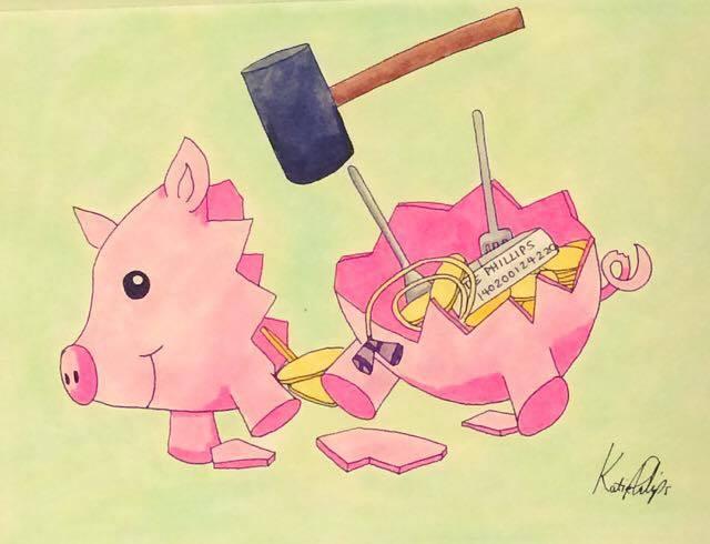 PiggyConfidentiality